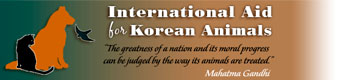 International Aid for Korean Animals